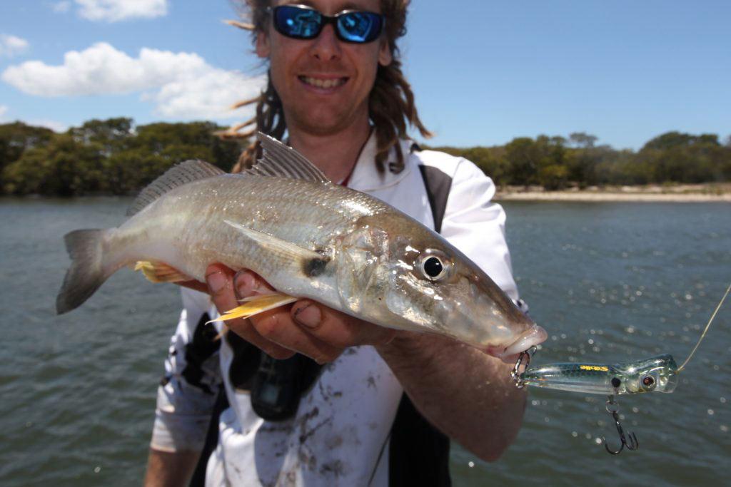 Fish-Port Stephens-estuary-Fishing-Charters